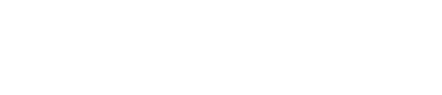 ViewPoint Italy Logo